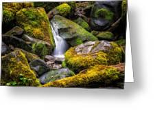Mossy Waterfall Greeting Card