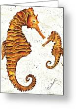 Mother And Baby Seahorse Greeting Card