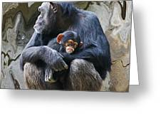 Mother And Child Chimpanzee 2 Greeting Card