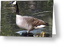 Mother Goose Is Watching Greeting Card