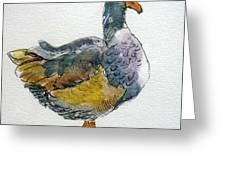 Mother Goose - Original Sold Greeting Card