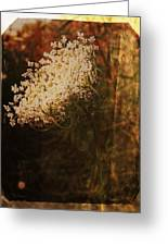 Mother Nature's Lace Greeting Card