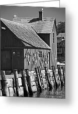 Motif Number One Bw Black And White Rockport Lobster Shack Maritime Greeting Card