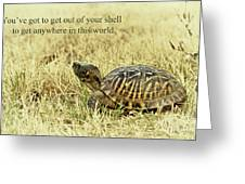 Motivating A Turtle Greeting Card by Robert Frederick