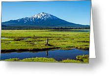 Mount Bachelor And Meadow Greeting Card