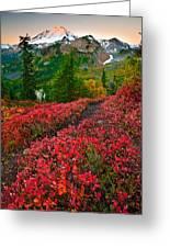 Mount Baker Sunrise Greeting Card