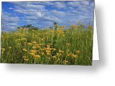 Mount Cheaha Goldenrod-alabama Greeting Card