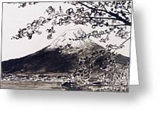 Mount Fuji Spring Blossoms Greeting Card