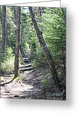 Mount Hancock Hiking Trail New Hampshire Greeting Card