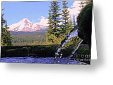 Mount Hood From Buzzard Point Greeting Card by Cari Gesch