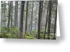 Mount Jim - Kinsman Notch New Hampshire Greeting Card