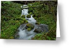 Mount Rainier Brook Greeting Card