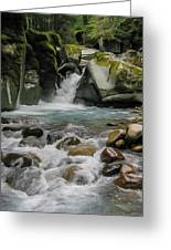 Mount Rainier Falls Greeting Card