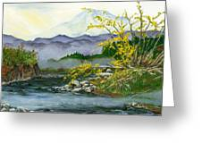 Mount Rainier From Carbon River Greeting Card