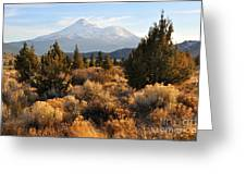 Mount Shasta In The Fall  Greeting Card by Gary Whitton