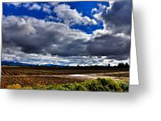 Mount Vernon Farmland - Washington State Greeting Card