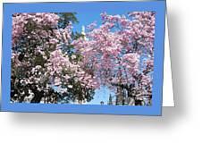 Baltimore's Mount Vernon In Spring Greeting Card