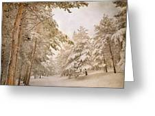 Mountain Adventure In The Snow Greeting Card