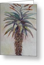 Mountain Aloe Greeting Card