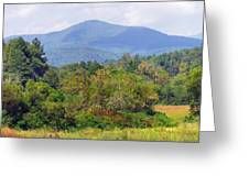 Mountain And Valley Near Brevard Greeting Card