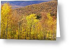 Mountain Autumn Greeting Card