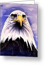 Mountain Bald Eagle Greeting Card