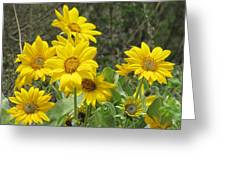 Mountain Bouquet Greeting Card