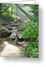 Mountain Brook Greeting Card