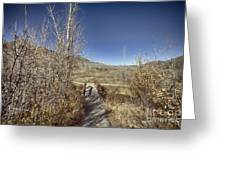 Mountain Creek Bridge Greeting Card