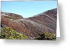 Mountain Frost Greeting Card