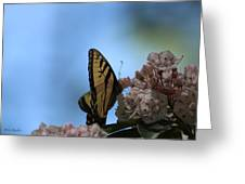 Mountain Larual Butterfly Greeting Card