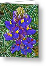 Mountain Lupine In Ancient Incan Pisac In Andes Mountains Above Sacred Valley-peru   Greeting Card