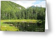 Mountain Marsh Greeting Card