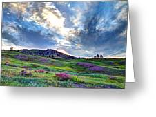 Mountain Meadow Of Flowers Greeting Card