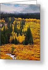 Mountain Meadows Greeting Card