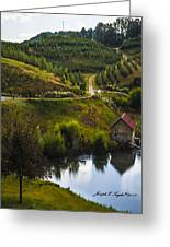 Mountain Orchard Greeting Card