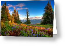 Mountain Rainier  Sunset Greeting Card by Emmanuel Panagiotakis