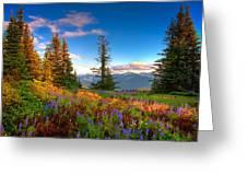 Mountain Rainier  Sunset Greeting Card