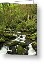 Mountain Rapids Greeting Card by Andrew Soundarajan