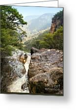 Mountain River Greeting Card