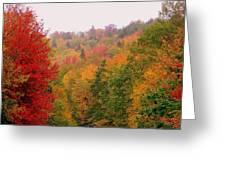 Mountain Road In Fall Greeting Card