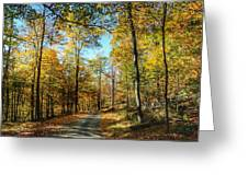 Mountain Road Greeting Card