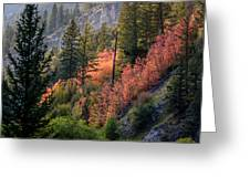 Mountain Side Colors Greeting Card