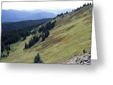 Mountain Slope Greeting Card