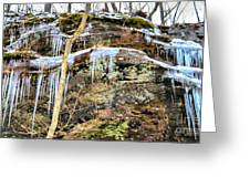 Mountain Spring Beauty  Greeting Card