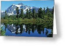 Mountain Springtime Greeting Card