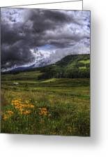 Mountain Storm Greeting Card