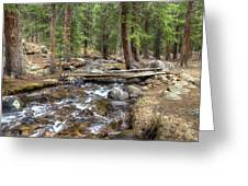 Colorado Mountain Stream 2 Greeting Card