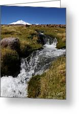 Mountain Stream And Guallatiri Volcano Greeting Card