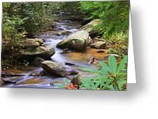 Mountain Stream Greeting Card